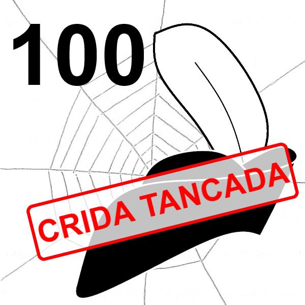 VullEscriure-Teranyina-Escriu_Crida_100