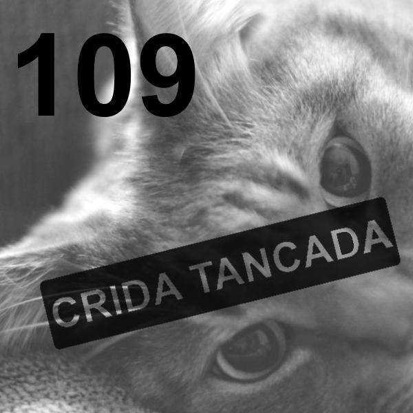 VullEscriure-Teranyina-Escriu_Crida_109